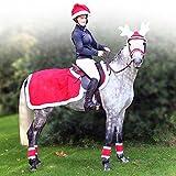 Weihnachten Nierendecke Fleecedecke Ausreitdecke Weihnachtsdecke Decke rot, Groesse:FULL