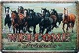 Welcome Friends - Pferd Pferdefreund Wildpferd Horse 20x30 Blechschild 679