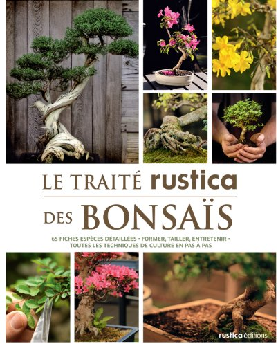 Le trait rustica des bonsas