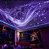 ShAH Große Benutzerdefinierte Abstrakte Schillernd Bunte Modische Decke Decke Fliesen- Dekoration 3D Tapete Hintergrundbild Wallpaper Wandmalerei Fresko Mural 200cmX100cm
