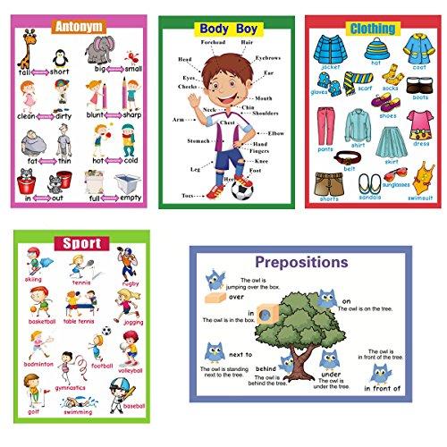 Sancent 5pièces laminé éducatif Maternelle Posters pour Toddlers| Educational murale Tableaux | école salle de classe Posters: | Class Décorations pour Kindergarten- Antonym, corps garçon, vêtements, sport, Prepositions.