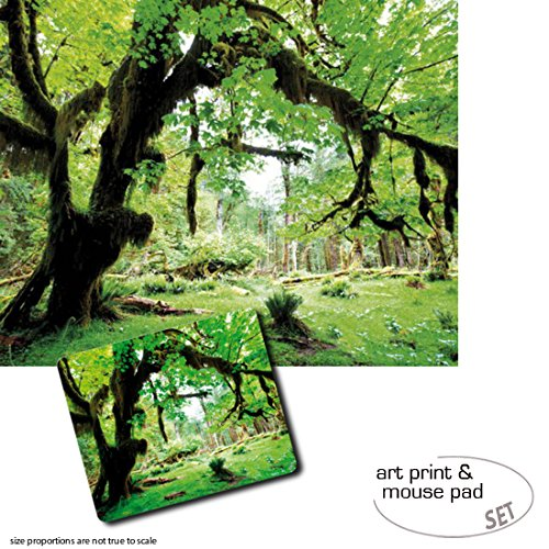 set-regalo-1-stampa-darte-50x40-cm-1-tappetino-per-mouse-23x19-cm-boschi-deep-green-forest-back-to-n
