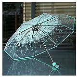Parapluie de voyage léger anti-UV transparent avec fleurs...