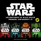 Star Wars Adventures in Wild Space