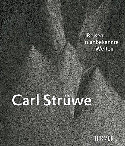 Carl Struwe: Reisen in Unbekannte Welten