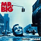 Bump Ahead by Mr.Big (2015-06-24)