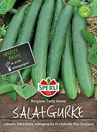 Gurkensamen – Gurke, Burpless Tasty Green F1 Hybride von Sperli-Samen