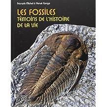 Les fossiles, témoins de l'histoire de la vie