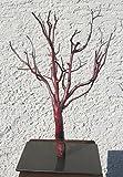 Gartendekoshop24 Unikater Dekobaum Echt Baum Abendrot 06