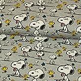 Stoffe Werning Baumwolljersey Lizenzstoff Peanuts Snoopy Faces Woodstock Kinderstoffe GOTS - Preis Gilt für 0,5 Meter