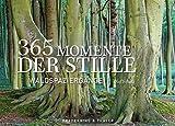 365 Momente der Stille: Waldspazierg�nge. Der inspirierende Dauerkalender als Tischaufsteller. Mit Fotografien aus Deutschlands W�ldern Bild