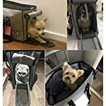 GossipBoy Stripe Pet Airline Approved Outdoor Travel Carrier Portable Dog Cat Handbag Oxford Kitten Puppy Tote Bag with… 14