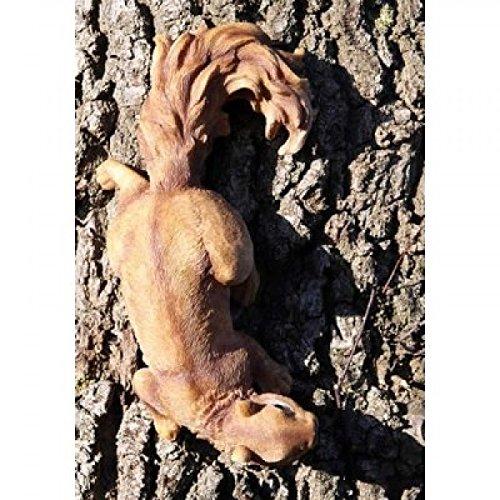 Figurine écureuil, originalgetreu, vie véritable Statue de jardin