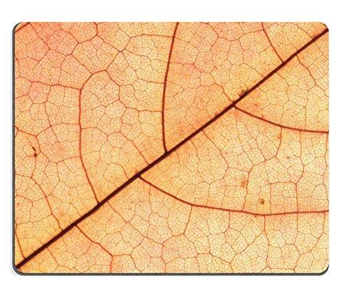 Jun XT Gaming Mousepad Bild-ID: 23992157Colorful Sonnenschirm
