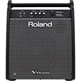 Roland PM-200 Personal Monitor Amplifier