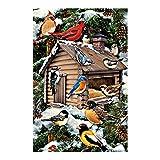 Winter Garden Essentials Vogelhaus Muster Banner draußen, Flaggen doppelseitig Wasserdicht und farbbeständig bedruckt Banner 31,8x 45,7cm 100% Polyester, Polyester, multi6, 28x40 Inch