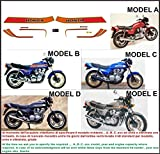 Kit ADESIVI Decal Sticker Honda CB 900 F Bol d 'Or 1981 gehabt (Ability to Customize The Colors)