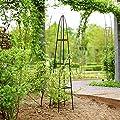 Rosa-Bogen-Pyramide Garten Grüne 31x31x200cm von Lifetime Garden - Du und dein Garten