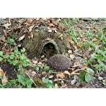 wildlife world habitat hedgehog home Wildlife World Habitat Hedgehog Home 61K6Uf8VtmL