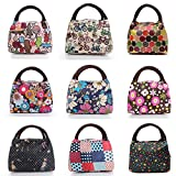 Casual Picnic Lunch Box Bag Carry Tote Colorful Storage Handbag