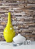 Steintapete Vlies Beige Grau Natur | schöne edle Tapete im Steinmauer Design | moderne 3D Optik für Wohnzimmer, Schlafzimmer oder Küche inklusive der Newroom-Tapezier-Profibroschüre mit super Tipps!