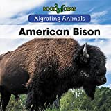 Best American Science y naturalezas - American Bison (Migrating Animals) Review