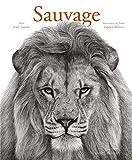 Sauvage | Cotton, Katie. Auteur