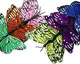 12er Set Dekoschmetterlinge - 12 Schmetterlinge zum Dekorieren (Groß) mit Magnet