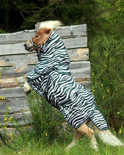 Fliegendecke Zebra Minishetty Mnipony Shetty Falabella Decke 65 70 75 80 85 90 cm HIER 65 cm (100)
