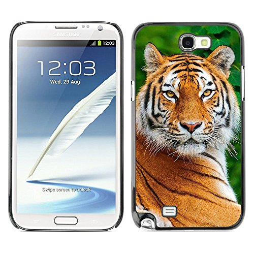 Plastic Shell Protective Case Cover    Samsung Galaxy Note 2 N7100    Big Cat Nature Animal Africa @XPTECH (Samsung Galaxy Stellar Hard Case)