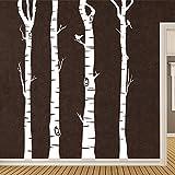 KLEBEHELD® Wandtattoo Birkenstämme - Birken - Stämme - Birkenstamm Farbe weiss, Größe 120cm