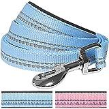 Blueberry Pet 1,5 cm by 150 cm Länge 3M Reflektierende Hundeleine in Pastellfarben Baby-Blau mit Neopren Gepolsterter Schlaufe, Passendes Halsband und Geschirr Separat Erhältlich