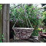 Garden Mile verschiedene Garten hängende Körbe Innen Außen Wandbehang Pflanzgefäß Pflanztöpfe Rattan Weiden Blumen Blumenampel Wandhalter Kokos Auskleidungen - 16' Round Rattan Basket