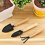 Style Eva 3 Piece Mini Garden Tool Set Gardening Shovels, Spade, Rale with Wooden Handles.