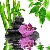StickersNews 11024 - Adhesivo Decorativo Mural, diseño Zen de Piedras y bambúes, 100 x 100 cm