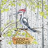 Artland Qualitätsbilder I Wandtattoo Wandsticker Wandaufkleber 70 x 70 cm Kindermotive Tiere Illustration Bunt C7NN Waldfreunde- der Laute Specht