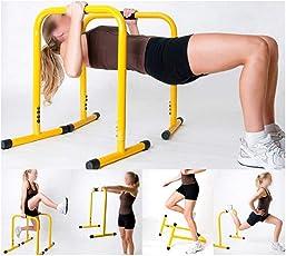 SKYBLUE Fitness Guru Functional Exercise Station Stabilizer Dip Bar (Multicolour)