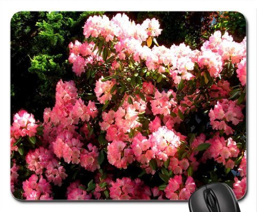 lovely-garden-rododendro-mouse-pad-mousepad-flowers-mouse-pad