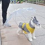 zhbotaolang Ombrello per Cane con Guinzaglio per Cani e Vista Facile Il Cucciolo Pieghevole Trasparente Trasparente Protegge Dalla Neve Piovosa