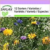 SAFLAX - Fiori commestibili - 1000 semi - 12 Sorten