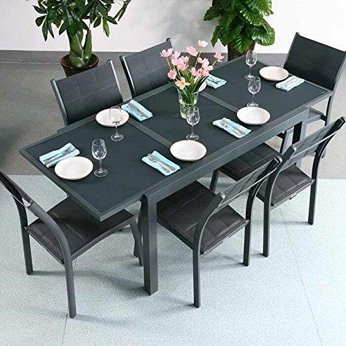 Table aluminium et verre Daisy et 6 Chaises Lea - GRIS | Table à manger extensible en métal 200cm