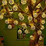 #9: RaajaOutlets Metal Ball with 20 LED Hanging Lantern String Lights(Golden)