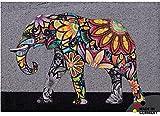 matches21 Fußmatte Fußabstreifer schmutzabsorbierend Schmutzfangmatte Elefant Bohemian Ethno 50x70 cm maschinenwaschbar