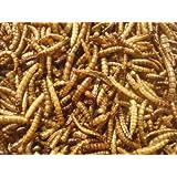Mehlwürmer getrocknet 1000 ml