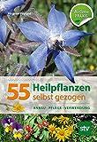 55 Heilpflanzen selbst gezogen: Anbau, Pflege, Verwendung, Bio-Garten PRAXIS