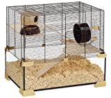Ferplast 57056117W1 Nagarium Karat 60, aus Glas, Komplettausstattung, Maße: 59,5 x 39 x 52,5 cm, schwarzes Gitter