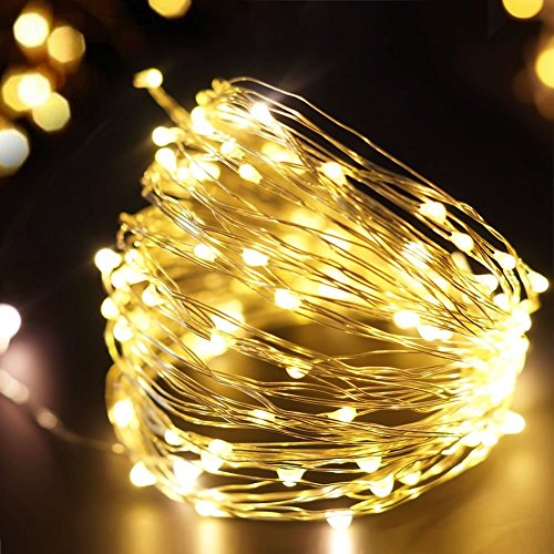 Beauty Lights 10M 100 LED Silver String Copper USB LED String Light Decorative Fairy String Lights (Warm White)
