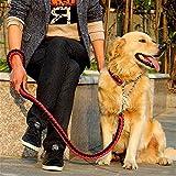 XEMZ Robuste geflochtene Hundeleine mit Halsband, weich, Hunde-Seil, handgefertigt mit bis zu Fuß Gurt Traction, Schock, verstellbar, mit Kette, für mittlere große Hunde