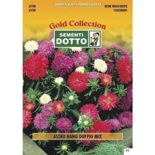 semi-di-astro-nano-a-fiori-doppi-in-mix-h-cm-20