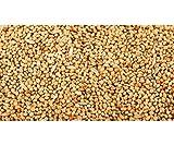 Wellensittichfutter mit Jod und Honig 2,5 kg Anhaltiner Premiumfutter